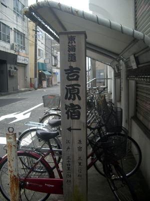 201005301