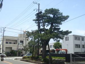 201005308