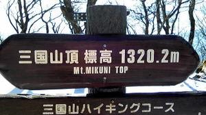 201012291