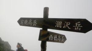 2011081733